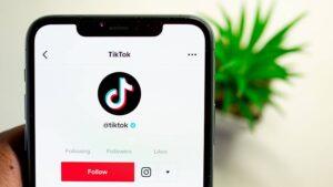 Past TikTok in je social media marketing strategie?